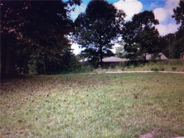 3145 S Elizabeth Drive, Douglasville, GA 30135 (MLS #6043276) :: Willingham Group