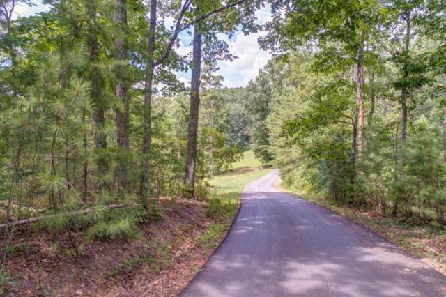 Lot 20 Meadowlands Drive, Talking Rock, GA 30175 (MLS #6043279) :: Willingham Group