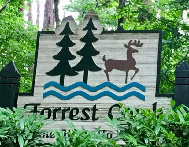 17  18 Forrest Creek Creek, Ellijay, GA 30536 (MLS #6043964) :: The Cowan Connection Team