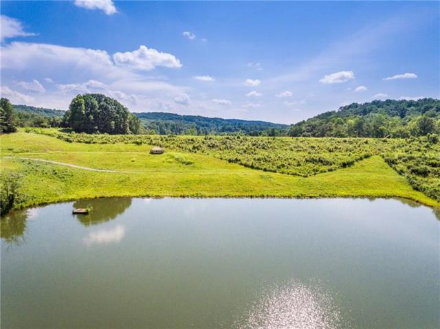 Lot 7 Meadowlands Drive, Talking Rock, GA 30175 (MLS #6047083) :: The Russell Group