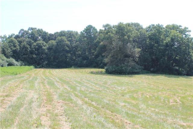 19 Middle Fork Lane, Carnesville, GA 30521 (MLS #6049282) :: RE/MAX Paramount Properties