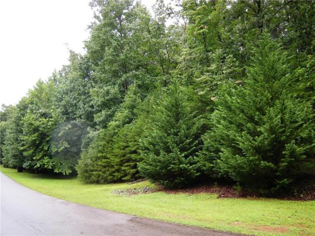 Lot 38 Nuckolls Lane, Dawsonville, GA 30534 (MLS #6050055) :: The Zac Team @ RE/MAX Metro Atlanta