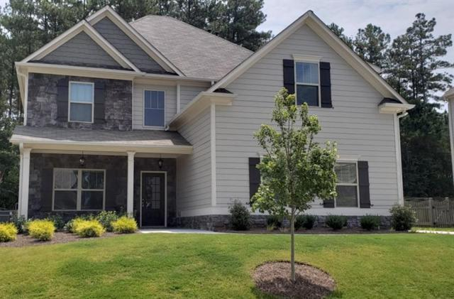 163 Starry Night Way, Dallas, GA 30132 (MLS #6054718) :: North Atlanta Home Team