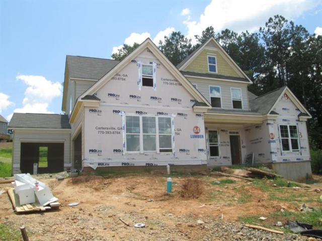 203 Starry Night Way, Dallas, GA 30132 (MLS #6055298) :: North Atlanta Home Team
