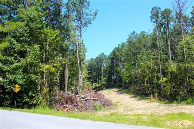 0 Dandy Road, Dallas, GA 30132 (MLS #6055572) :: Path & Post Real Estate