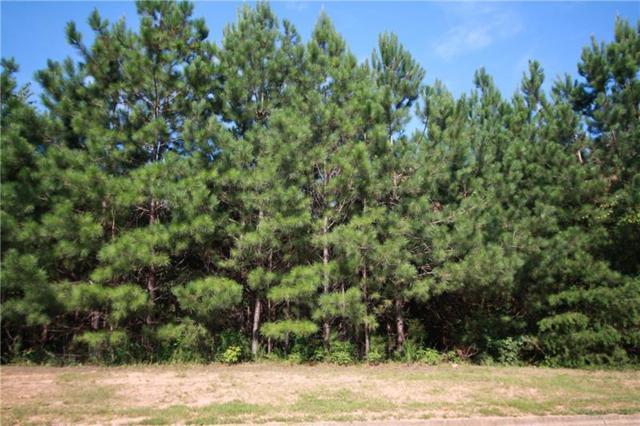 194 Cannon Ridge View, Dallas, GA 30132 (MLS #6056337) :: RE/MAX Paramount Properties