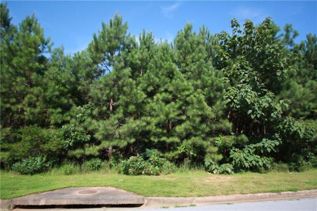 106 Cannon Ridge View, Dallas, GA 30132 (MLS #6056347) :: RE/MAX Paramount Properties