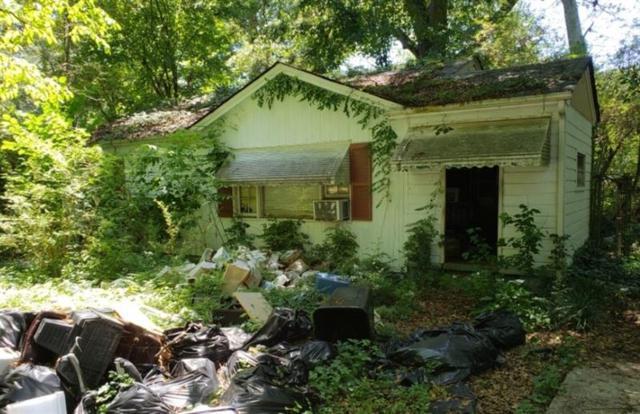 1797 Elaine Drive, Decatur, GA 30035 (MLS #6057934) :: North Atlanta Home Team