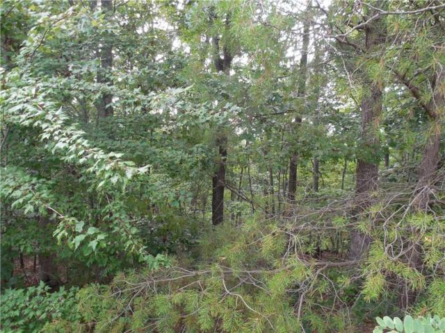 4.5 ac Outback Road, Jasper, GA 30143 (MLS #6061108) :: Hollingsworth & Company Real Estate