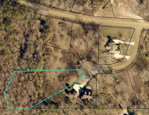 49 Caspian Trail, Ellijay, GA 30536 (MLS #6064259) :: North Atlanta Home Team