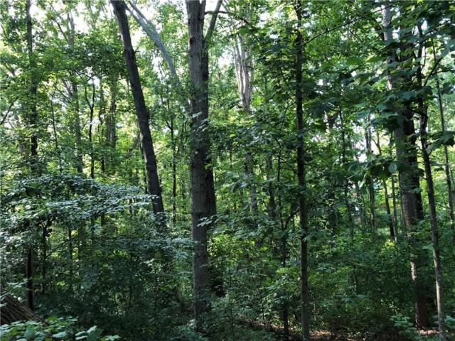 9315 Woodland Tree Lane, Cumming, GA 30028 (MLS #6066140) :: The Russell Group