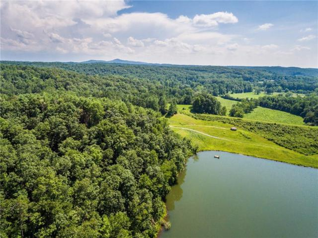 Lot 6 Meadowlands Drive, Talking Rock, GA 30175 (MLS #6069167) :: The Russell Group