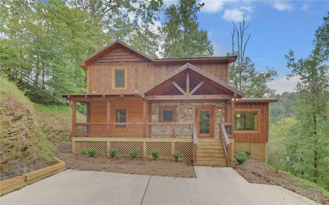 788 Spindrift Court, Ellijay, GA 30540 (MLS #6071689) :: Team Schultz Properties