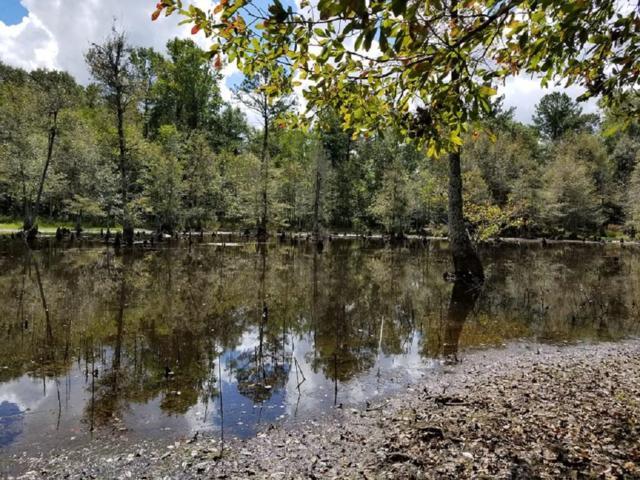 0 Suggs Mill Pond Farm Rd, Reynolds, GA 31076 (MLS #6072334) :: North Atlanta Home Team