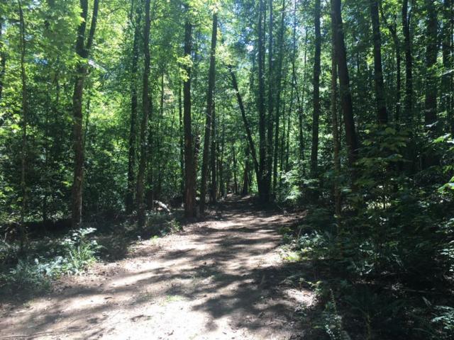 0 Forest Service Road, Dahlonega, GA 30533 (MLS #6073125) :: North Atlanta Home Team