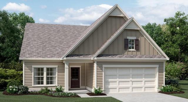210 William Creek Drive, Holly Springs, GA 30115 (MLS #6073694) :: North Atlanta Home Team