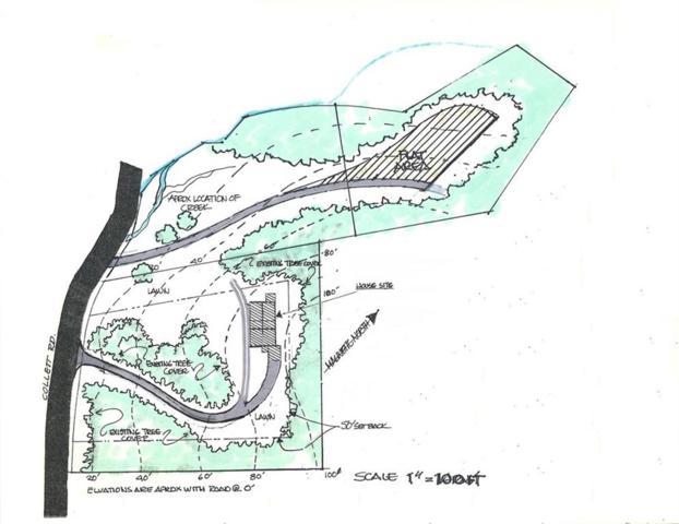 00 Collett Drive, Canton, GA 30115 (MLS #6078031) :: Rock River Realty