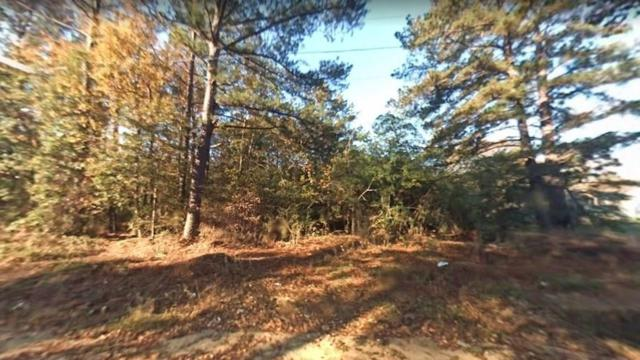 7161 Molton Road, Macon, GA 31216 (MLS #6080716) :: North Atlanta Home Team