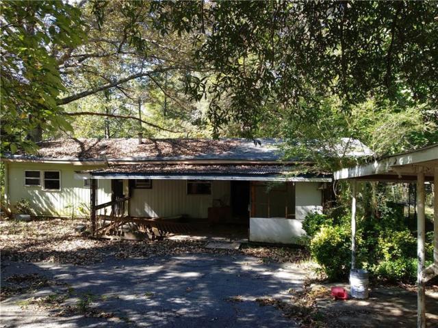 3869 King Drive, Douglasville, GA 30135 (MLS #6086024) :: RE/MAX Paramount Properties