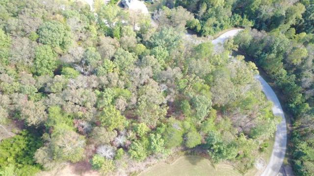 929 Golden Bear Pass, Dahlonega, GA 30533 (MLS #6088963) :: Path & Post Real Estate