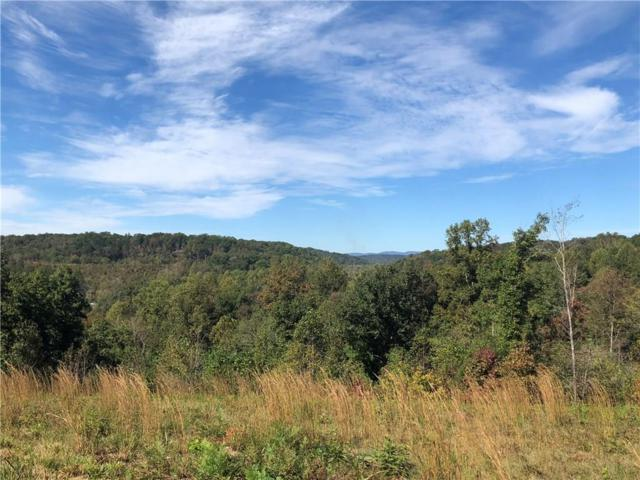 0 Brandy Mountain Road, Dahlonega, GA 30533 (MLS #6089197) :: Ashton Taylor Realty