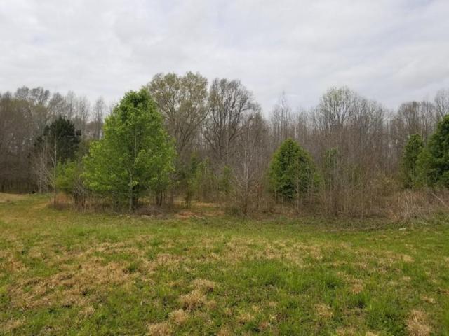 105 Broad Meadows Lane, Fayetteville, GA 30215 (MLS #6089237) :: Kennesaw Life Real Estate