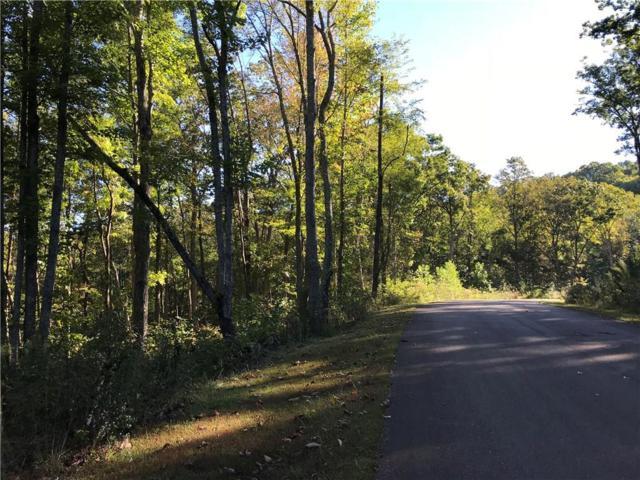 144 Trailwood Drive, Ellijay, GA 30536 (MLS #6089450) :: North Atlanta Home Team