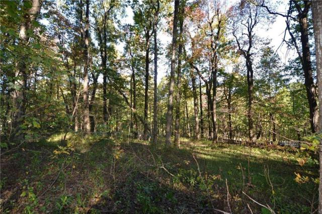 Lot 43 High Cliff Road, Jasper, GA 30143 (MLS #6090764) :: RE/MAX Paramount Properties
