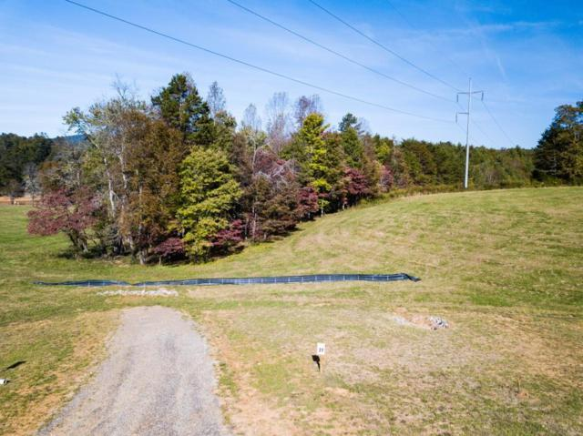 Lot 27 The Grove, Blairsville, GA 30512 (MLS #6092046) :: North Atlanta Home Team