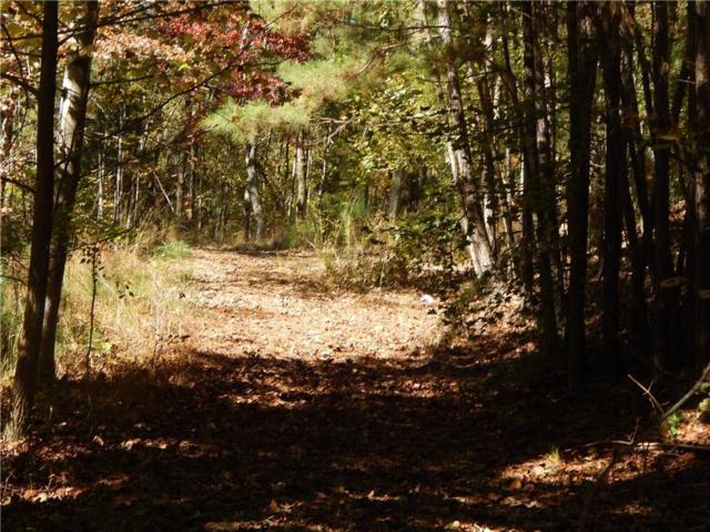 687 Patriot Trail, Canton, GA 30114 (MLS #6092632) :: Ashton Taylor Realty