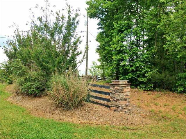 305 Cain Creek Overlook, Ball Ground, GA 30107 (MLS #6100456) :: Hollingsworth & Company Real Estate