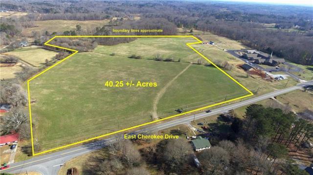 00 East Cherokee Drive, Canton, GA 30115 (MLS #6100777) :: RE/MAX Paramount Properties