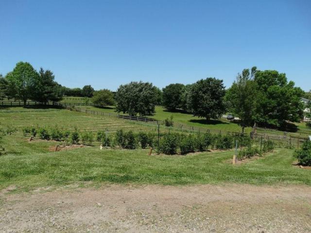 5595 Ranch Drive, Cumming, GA 30041 (MLS #6101910) :: Team Schultz Properties