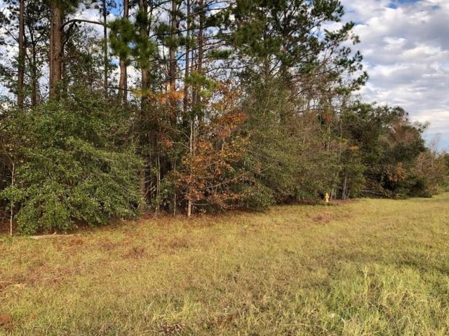 LL 103 Grave Springs Road, Leesburg, GA 31763 (MLS #6102953) :: North Atlanta Home Team