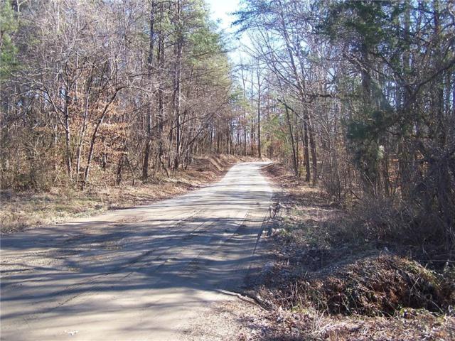 2 Nix Bridge Park Road, Dawsonville, GA 30534 (MLS #6103473) :: North Atlanta Home Team