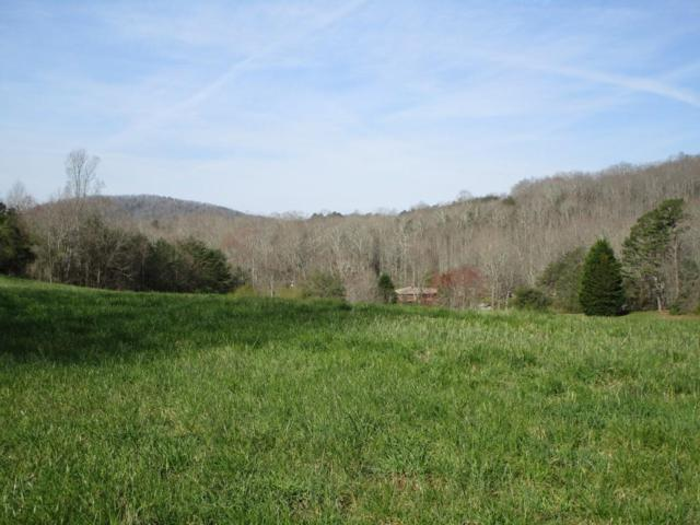 Tr 2 Porter Springs Road, Dahlonega, GA 30533 (MLS #6104207) :: Hollingsworth & Company Real Estate