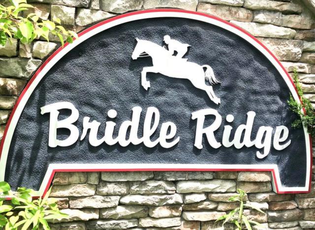 214 Bridle Lane, Canton, GA 30114 (MLS #6104324) :: The Cowan Connection Team