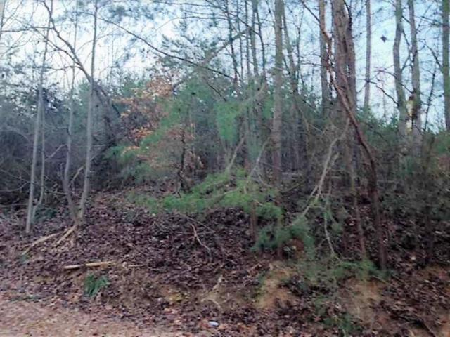 7Acres C Rogers Road, Gainesville, GA 30506 (MLS #6104565) :: Hollingsworth & Company Real Estate