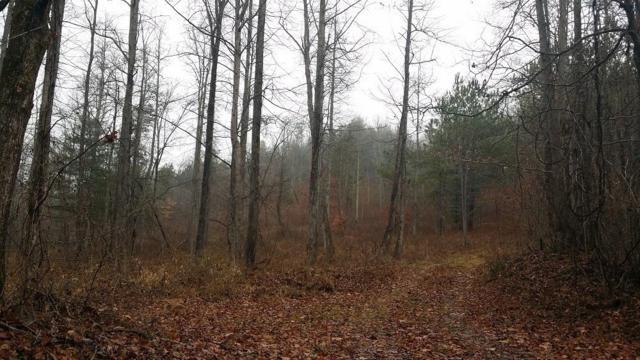 0 Burnt Mountain Road, Jasper, GA 30143 (MLS #6105171) :: Path & Post Real Estate
