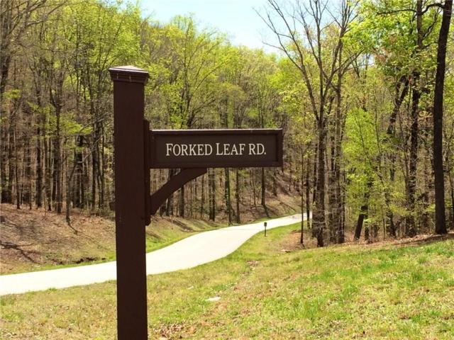 0 Forked Leaf Drive, Cleveland, GA 30528 (MLS #6105945) :: North Atlanta Home Team