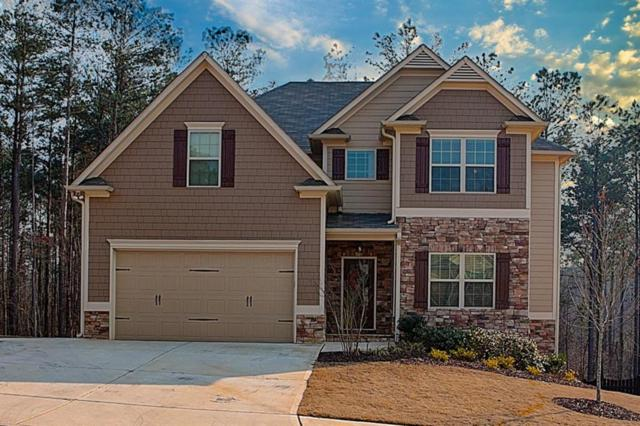 1282 Double Branches Lane, Dallas, GA 30132 (MLS #6106061) :: North Atlanta Home Team
