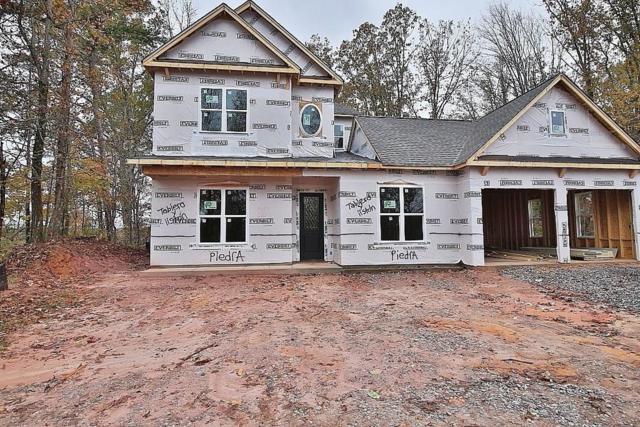 260 Rockhound Drive, Dahlonega, GA 30533 (MLS #6106421) :: Hollingsworth & Company Real Estate
