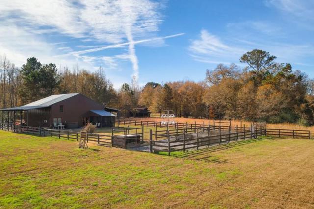 1038 White Graves Road, Ranger, GA 30734 (MLS #6106842) :: Team Schultz Properties