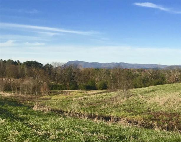 000 White Graves Road, Ranger, GA 30734 (MLS #6106997) :: Team Schultz Properties