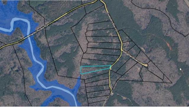 0 Blackberry Bend, Elberton, GA 30635 (MLS #6108654) :: North Atlanta Home Team