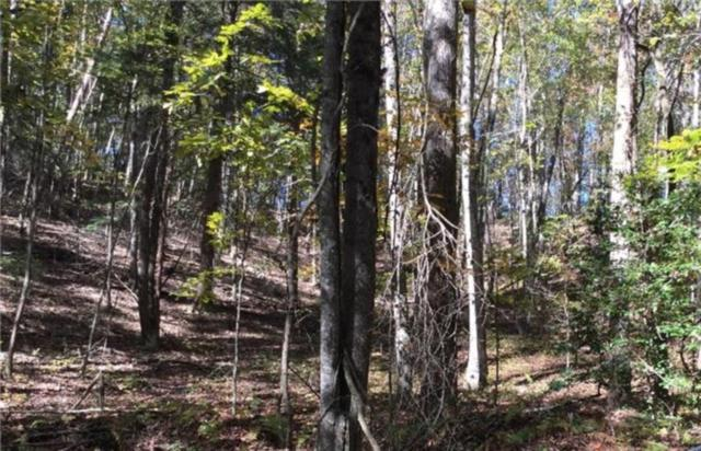 0 Walhalla Lot 387 Court, Ellijay, GA 30540 (MLS #6109499) :: The North Georgia Group