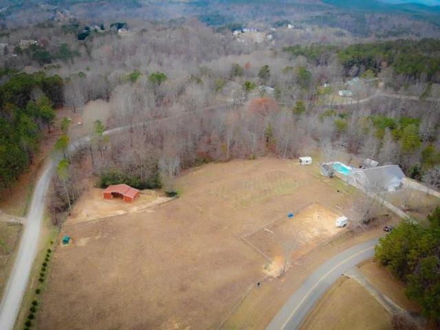 103 Mountain Laurel Drive, Jasper, GA 30143 (MLS #6110032) :: North Atlanta Home Team