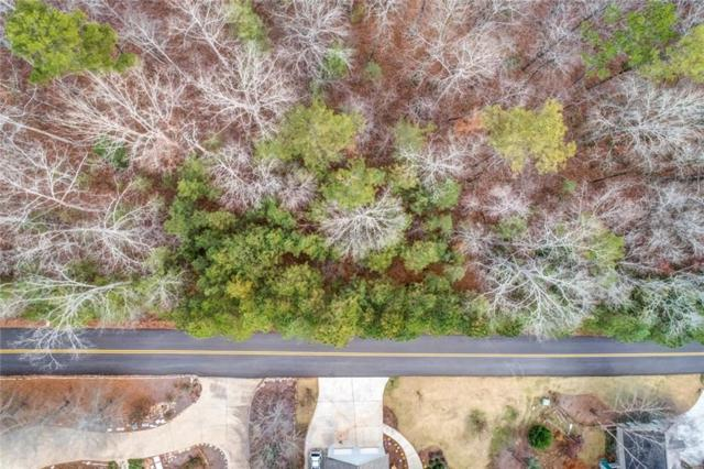 Lot 203 Savage Court, Jasper, GA 30143 (MLS #6110347) :: Path & Post Real Estate