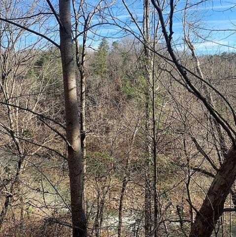 1756A Elk Trail, Chatsworth, GA 30705 (MLS #6117018) :: The Zac Team @ RE/MAX Metro Atlanta