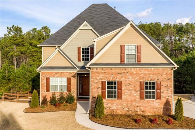 317 Ivy Hall Lane, Dallas, GA 30132 (MLS #6117836) :: North Atlanta Home Team
